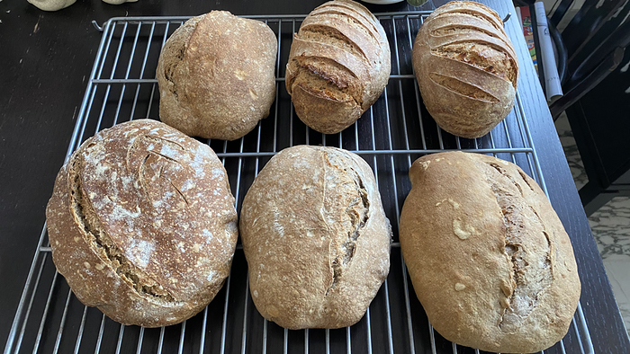 Two rye and four buckwheat loaves