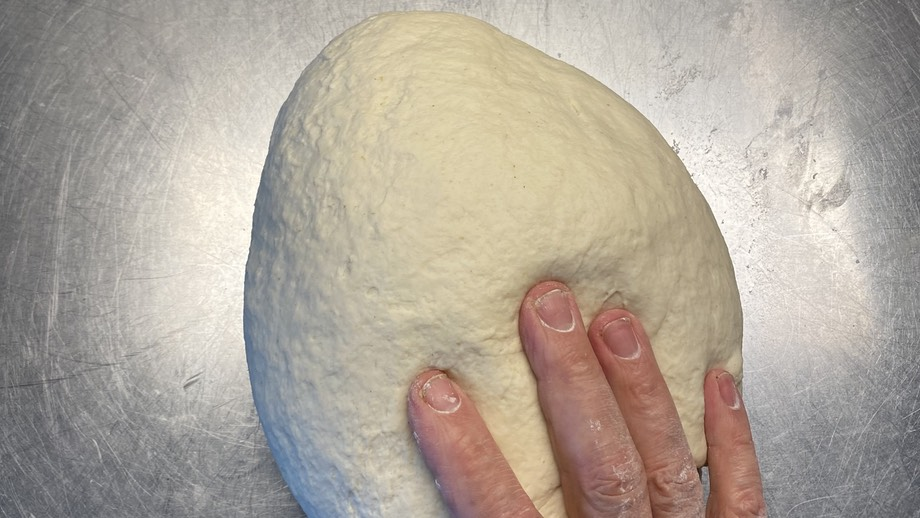 Bagel dough with a hand for scale