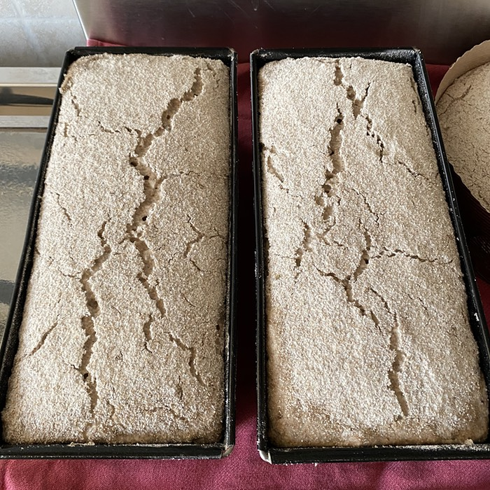 Risen rye dough with clear cracks on the surface